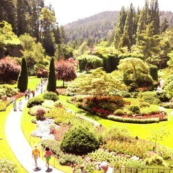 Sunken Garden photo